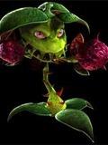 Pummel Weed